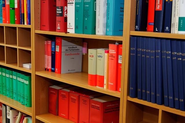 Gli aspetti giuridici ed economici del risarcimento del danno. Danno patrimoniale, morale, biologico ed esistenziale.