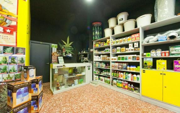 Che cos'è un grow shop e come avviarne uno.